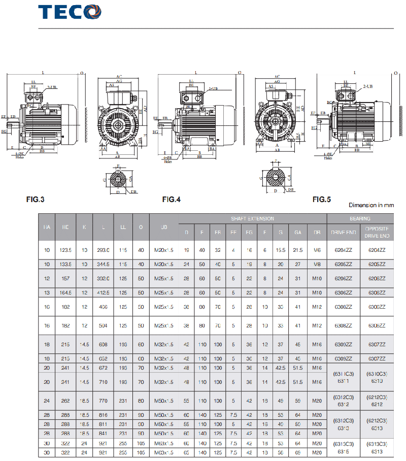 teco motor catalogue